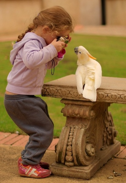 Little girl cutest innocent