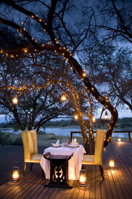 al fresco dining outside tree lights decor nature